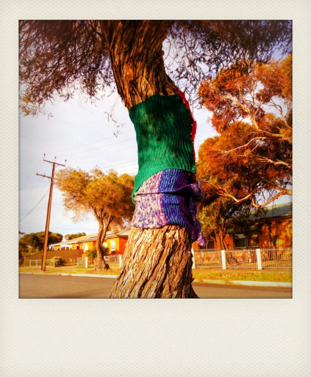 yarn bombing a tree 2