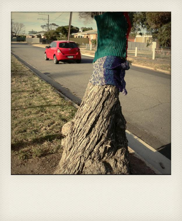 yarn bombing the tree 3