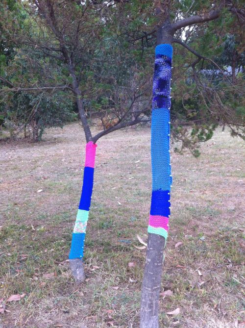 yarn bomb trees 1